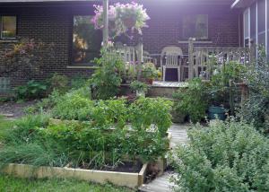 New herb garden straight on.
